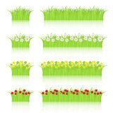Grass and flowers set. Set of grass with flowers on white background.EPS file available Stock Image