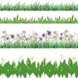 Grass and flowers, set seamless Stock Images