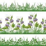 Grass and flowers, set seamless Royalty Free Stock Image