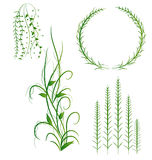 Grass With Flowers Set. Vector Illustration Royalty Free Stock Images
