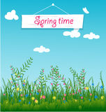 Grass With Flowers Set. Vector Illustration Stock Photo