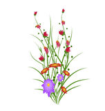 Grass With Flowers Set Royalty Free Stock Photo