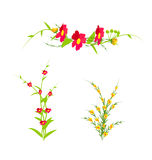 Grass With Flowers Set. Vector Illustration Stock Photography