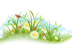 Grass and flowers. Spring summer banner with grass, flowers and butterfly Royalty Free Stock Photo