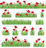 Grass and flowers. Summer decor nature set. Grass border background set. Summer icon and seamless floral frame collection Stock Image
