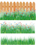 Grass and flowers, vector Royalty Free Stock Images