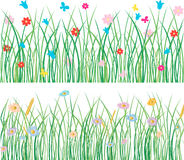Grass with flowers. Vector floral background of the summer meadow Stock Images