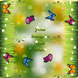 Grass with flowers. Very high quality original trendy illustration of grass with flowers and butterfly frame for text or card Royalty Free Stock Photography
