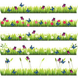 Grass with flowers. Very high quality original trendy set of grass with flowers and butterflies Royalty Free Stock Images