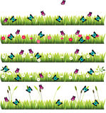 Grass with flowers. Very high quality original trendy set of grass with flowers and butterflies Stock Photos
