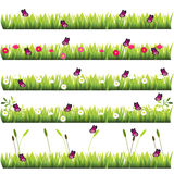 Grass with flowers. Very high quality original trendy set of grass with flowers and butterflies Royalty Free Stock Photo