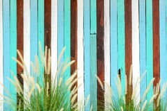 Grass flowers with vintage wood Stock Photos