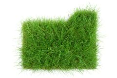 Grass Folder on white Background stock photography