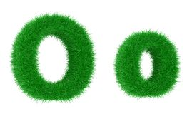 Grass font Royalty Free Stock Photography