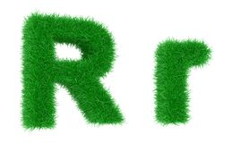 Grass font Stock Photography