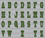 Grass font Stock Image