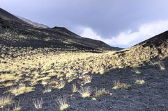 Grass and volcanic landscape Stock Photography