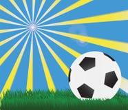 Grass football Royalty Free Stock Photography