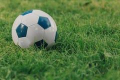 Soccer ball on the grass stock photos