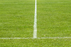 Grass of football field. Royalty Free Stock Photography