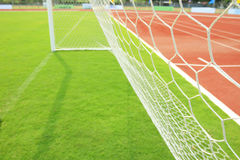 Grass in football ground. Net and grass in football ground, beatiful & colorful Royalty Free Stock Photo