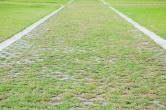 Grass footpath Royalty Free Stock Images