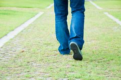 Grass footpath Stock Photo