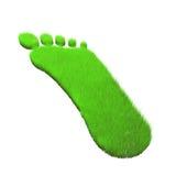 Grass footprint. Stock Photos