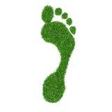 Grass footprint Stock Photography