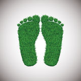Grass footstep Royalty Free Stock Image