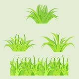 Grass. Fragment of paper green grass. Vector illustration Stock Photography