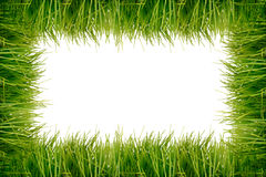 Grass frame Stock Photos