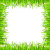 Grass Frame Stock Photo