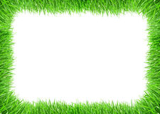 Grass frame. Frame and borders form by green grass royalty free stock images