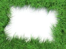 Grass frame. Green grass frame with white background Royalty Free Stock Images