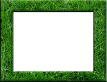 Grass frame Royalty Free Stock Photos