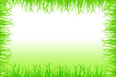 Grass Frame Background Stock Photos