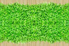 Grass frame on bamboo background Royalty Free Stock Images