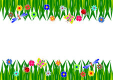 Grass Frame. Grass flowers and insects background Royalty Free Stock Photo