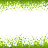Grass frame Stock Image