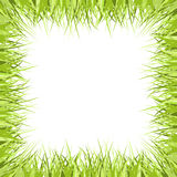 Grass frame Stock Photo