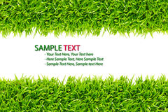 Grass frame isolated Stock Photography