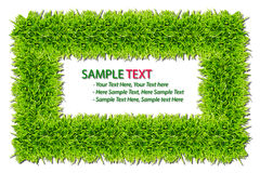 Grass frame isolated. On white background royalty free stock photo