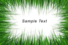Grass frame with space for text Stock Images