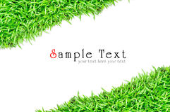 Grass frame in white background Stock Photo