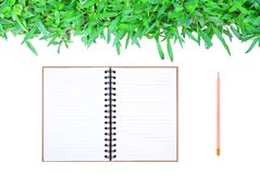 Grass frame on white background with book & pencil Royalty Free Stock Photography