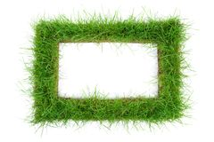 Grass Frame on white Background royalty free stock image