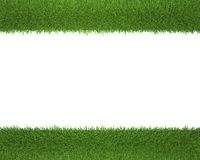 Grass frame on a white background for photos Royalty Free Stock Images