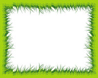 Grass Frame With Blank Space For Your Text Royalty Free Stock Image