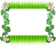 The Grass frames Royalty Free Stock Photos